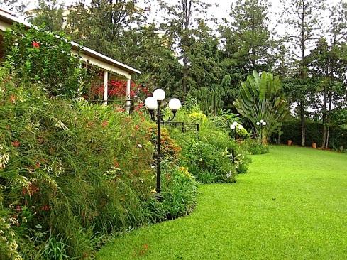 Red and cream Russelia equisetiformis dominate this area.