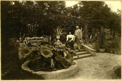 Note the same benches throughout the garden, c. 1890.