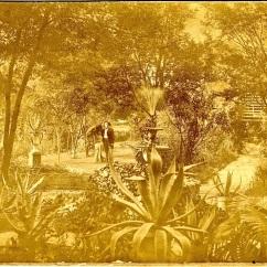 Ivy Cottage, c. 1890.