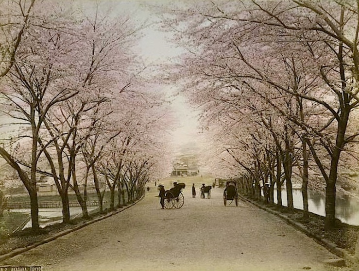 Akasaka, Tokyo, 1890s, from The New York Public Library Commons on flickr