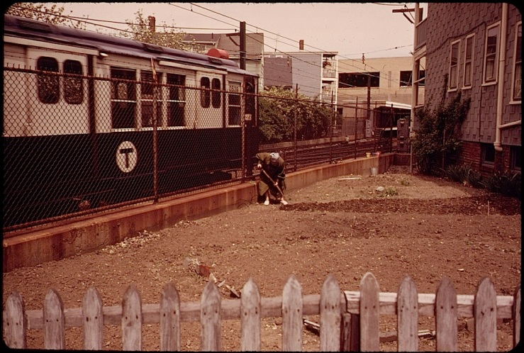 Life in gardens/enclos*ure: East Boston, 1973, by M.P. Manheim, via Natl. Archives