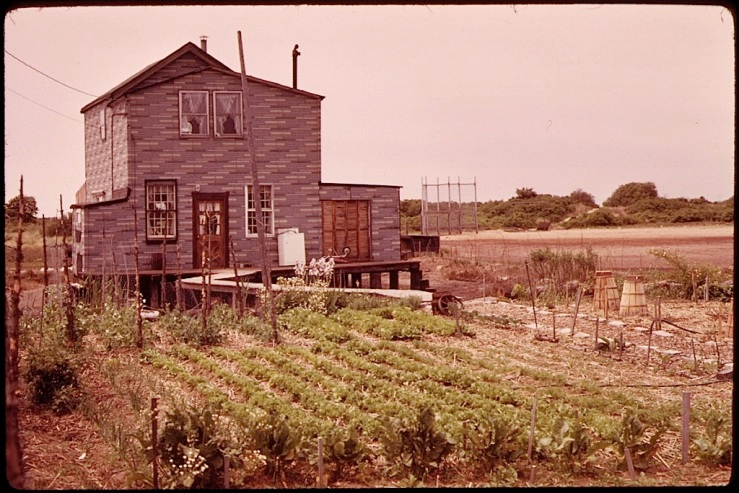 Vintage landscape/enclos*ure: Jamaica Bay vegetable garden, 1973, by A. Tress, via National Archives