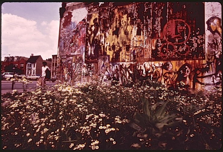Vintage landscape:enclos*ure - Chicago mural, 1973, John H. White, via Natl. Archives