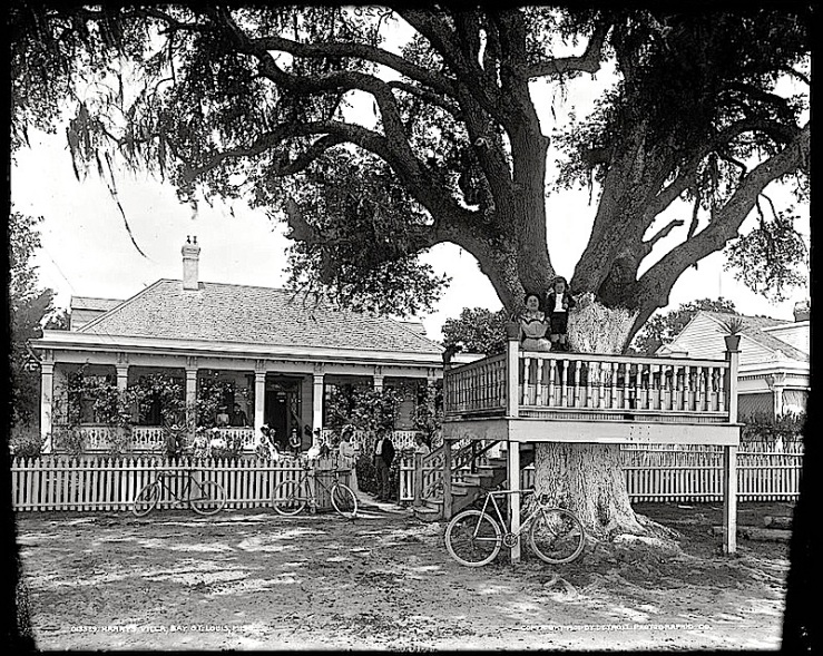 """""""Harry's villa, Bay St. Louis,""""  between 1901 and 1906, Detroit Publishing Co., via Library of Congress Prints and Photographs Division."""