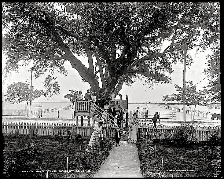 """Shoo-fly at Madame Boyle's, Bay St. Louis,"" between 1901 and 1906, Detroit Publishing Co., via Library of Congress Prints and Photographs Division."