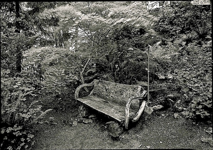 Vintage landscape/enclos*ure: bench at Ladder Creek Gardens, Washington, via HABS, Library of Congress