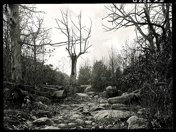 Dry stream bed, via Library of Congress