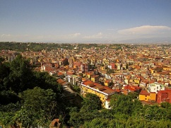 View of the city from Certosa di San Martino, looking north.