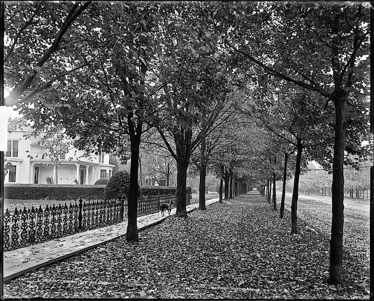 Mount Clemens, MI, ca. 1890, via Library of Congress