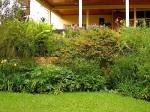 enclos*ure: our Kigali garden, Summer 2014 - lower lawn