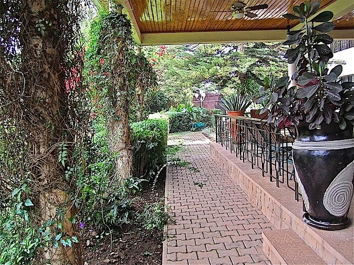 enclos*ure: our Kigali garden 2011 - upper lawn