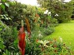 enclos*ure: our Kigali garden, April 2014 - lower lawn