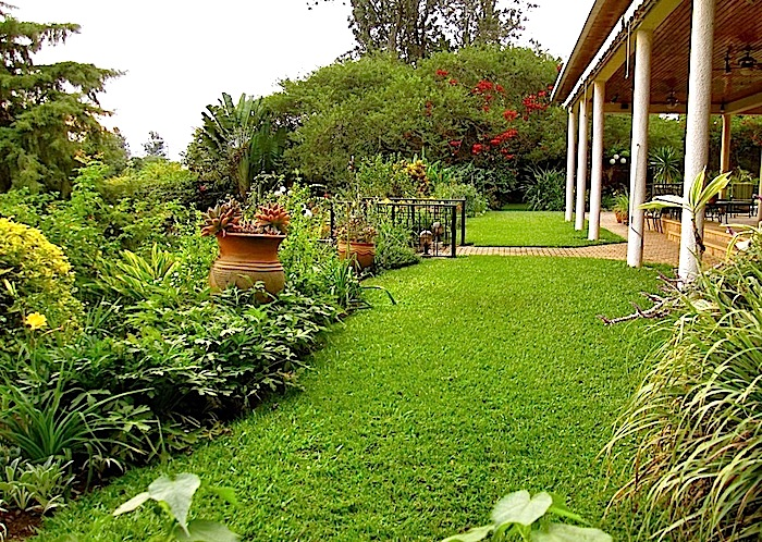 enclos*ure: our Kigali garden, June 2014 - upper lawn