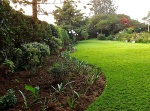 enclos*ure: our Kigali garden, Summer 2012 - lower lawn