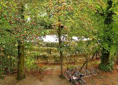 Amsterdam park in September, enclos*ure