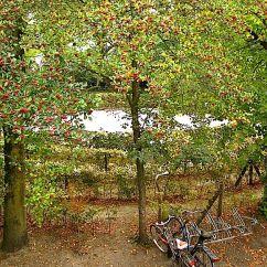 Amsterdam park in September, enclos*ure