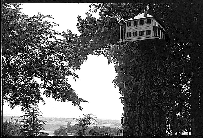 Farmhouse birdhouse 2, via Library of Congress