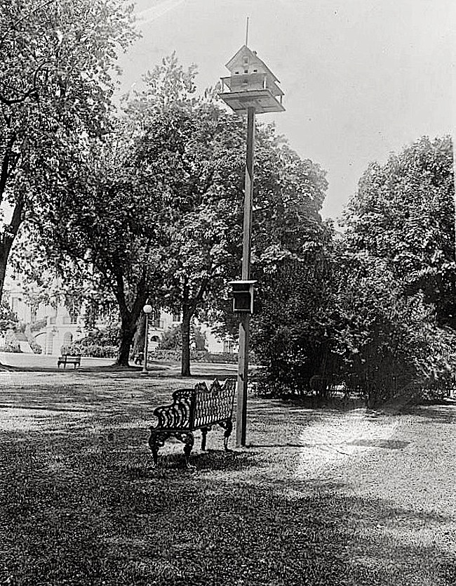 Wh.House birdhouse, Harding Admin., via Library of Congress