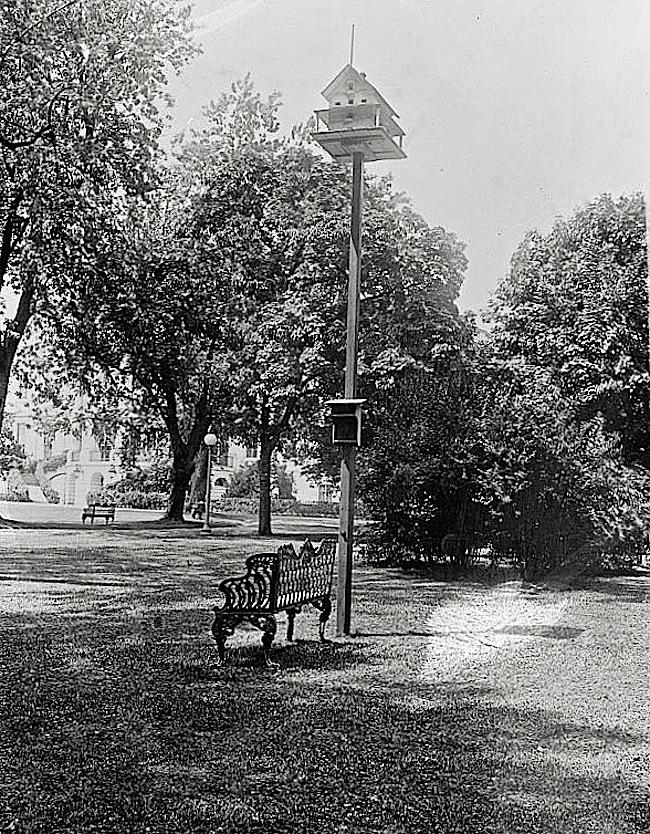 Wh.House birdhouse, Harding Admin., via Library of Congress