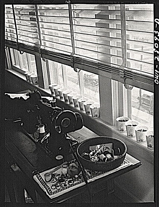 Starting seeds 2, 1943, L. Rosskam, Library of Congress
