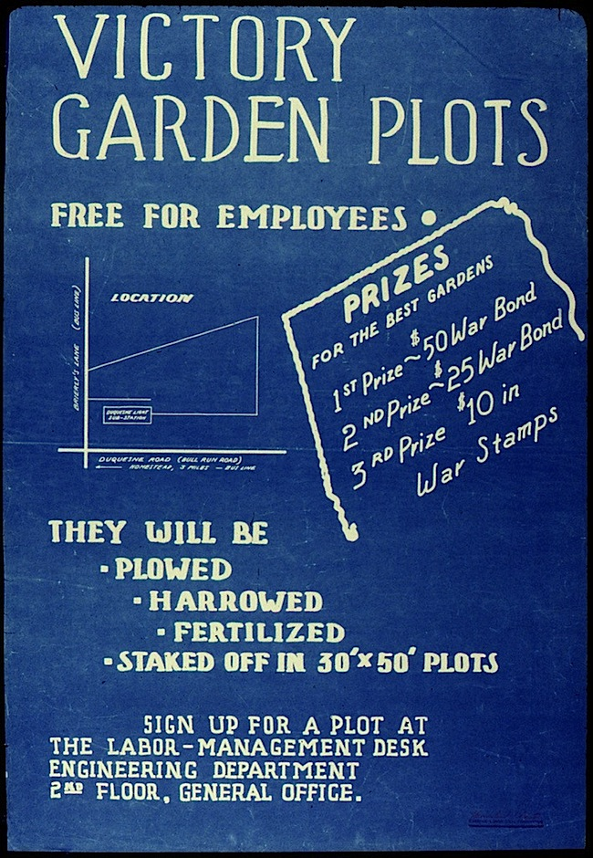 Victory garden poster, National Archives