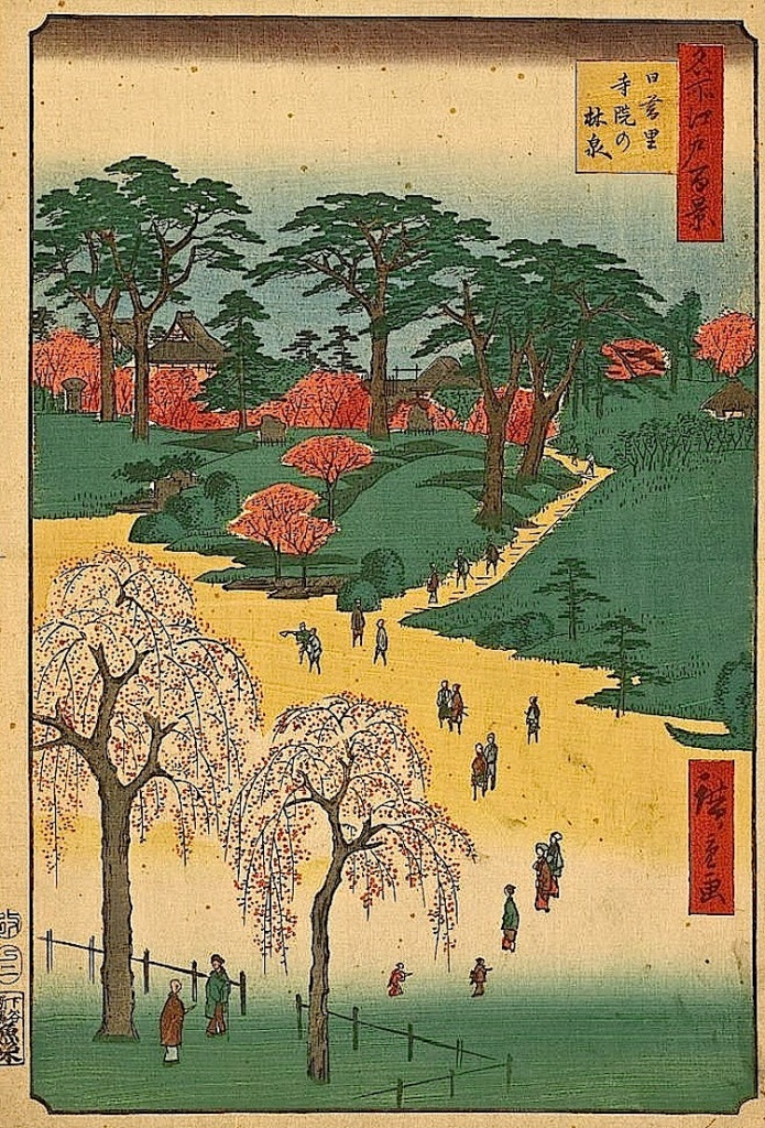 Cherry blossoms in Japan, Library of Congress