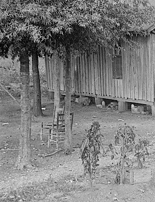 cropped 2, Sharecropper's house, Dyess Colony, Arkansas, 1935, Library of Congress