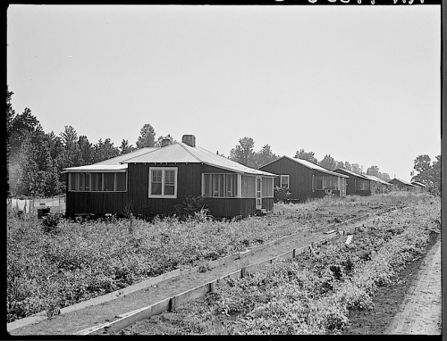 Delta Coop Farm houses, 1937, Library of Congress