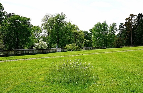 Hohenheim lawn 10, enclos*ure
