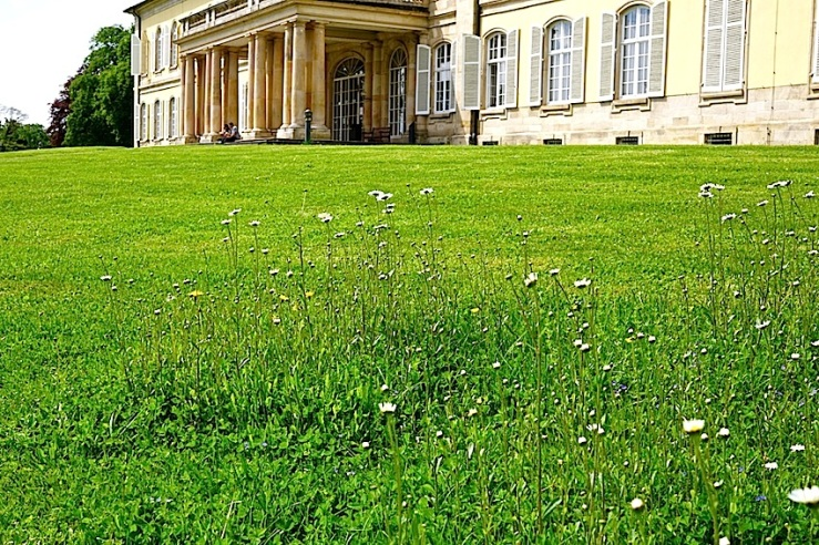Hohenheim lawn 8, enclos*ure