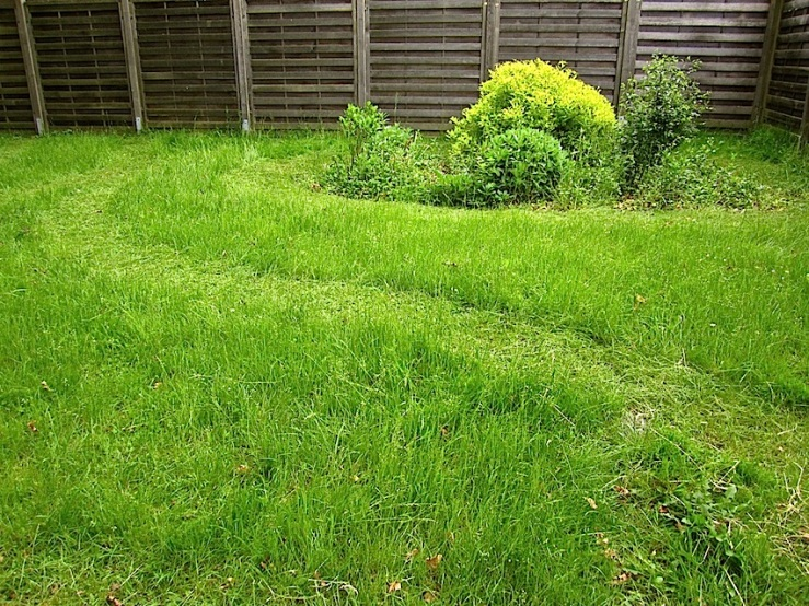 our yard 2, enclos*ure