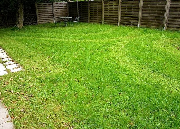 our yard 3, enclos*ure