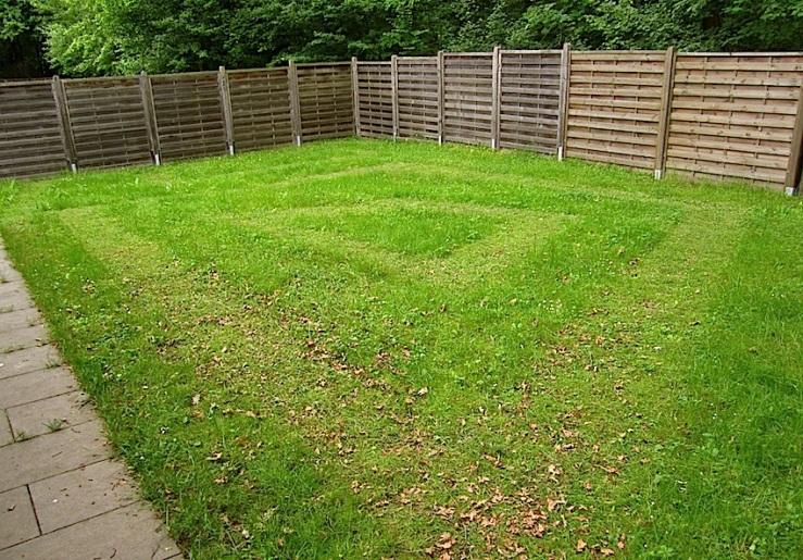 our yard 7, enclos*ure