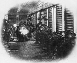"""""""Invicta, the home of the Kingsfords in Cairns, ca. 1888."""""""