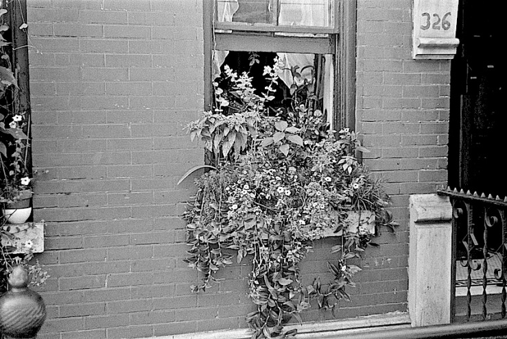 61st St., NYC, N.B., 1938, W. Evans, Lib Congress