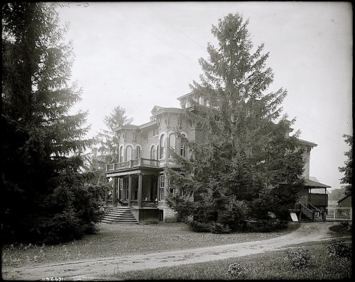 1 The Firs, ca. 1900, Library of Congress