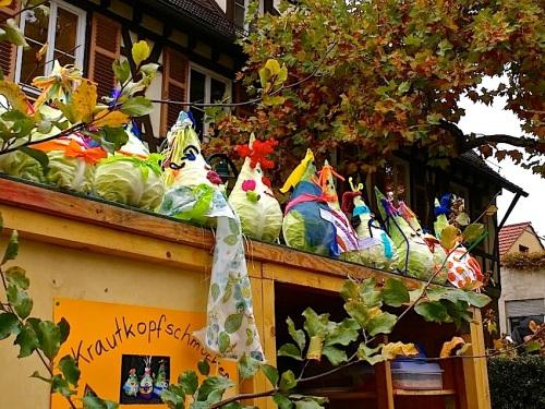 12 Cabbage Fest, enclos*ure