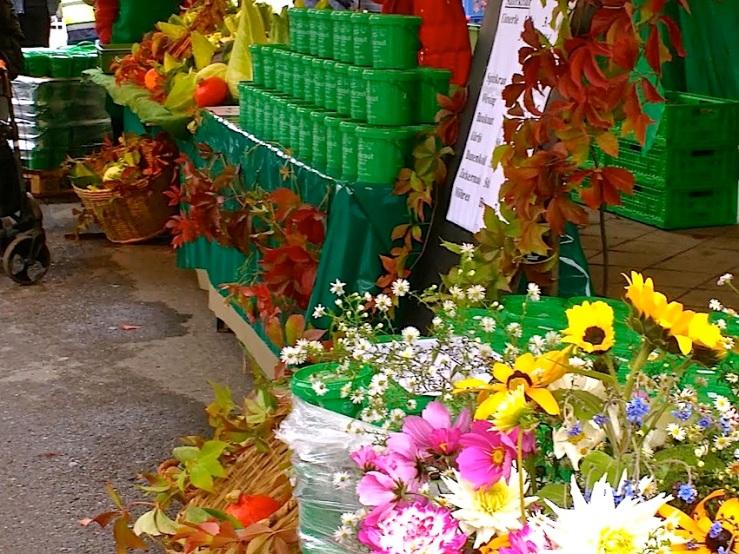 14 Cabbage Fest, enclos*ure