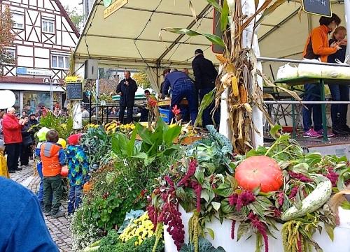 25 Cabbage Fest, enclos*ure