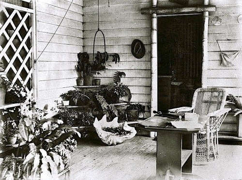 Queensland porch with shell, ca. 1895, via State Library of Queensland