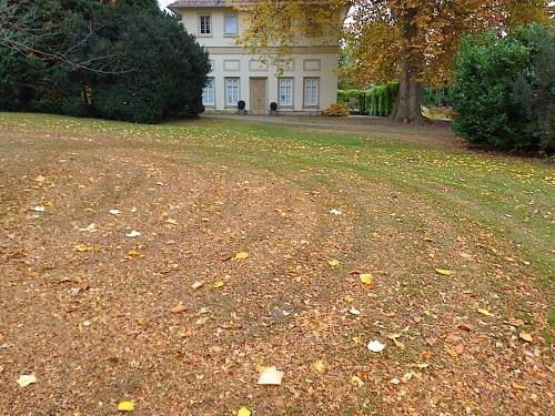 The Hohenheim Palace botanical gardens, November 1, 2015, by enclos*ure