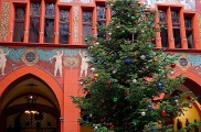 The Christmas tree at the city town hall or Rathaus.