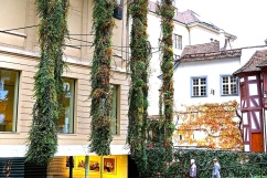 Basel Museum of Culture, 2015, enclos*ure