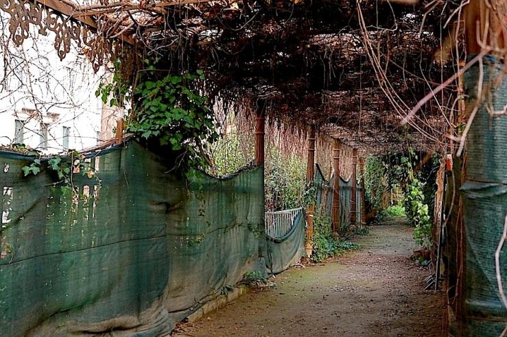 Palace Gardens, Venice, 2015, enclos*ure