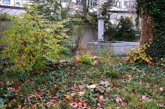 The front garden, Mission 21, Basel, Switzerland, late November 2015, by enclos*ure