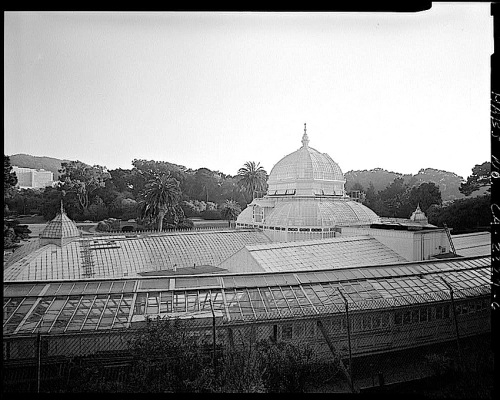 Conservatory Exterior, by J. Lowe, 1981, San Francisco, Library of Congress
