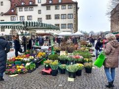 The flower market at Schillerplatz.