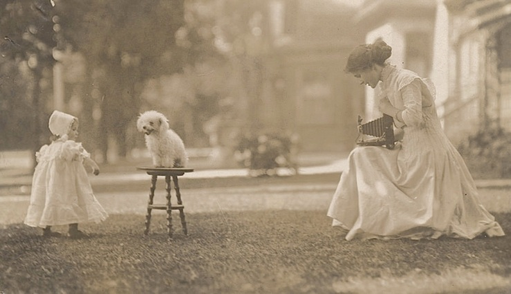 Puppy posing, ca. 1900, Huron County Museum