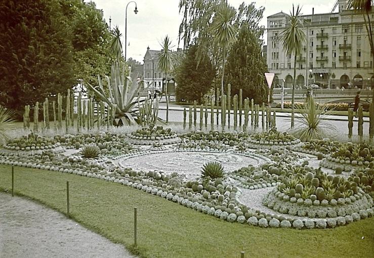Swedish cactus display, 1942, Swedish Heritage Board on flickr
