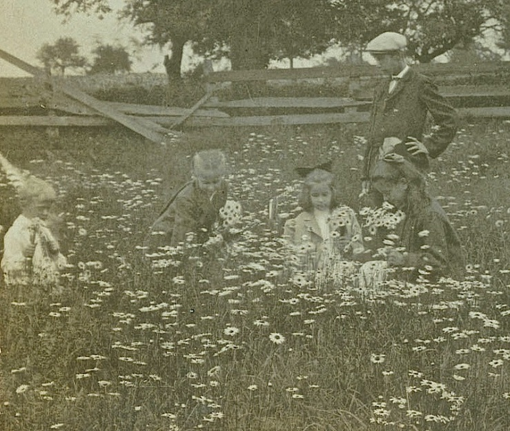 Children in daisies, Library Company of Philadelphia